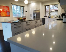 Chestnut Hill Kitchen Renovation